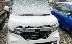 この季節に雪が^^;N-BOXカスタム号にも雪が・・・